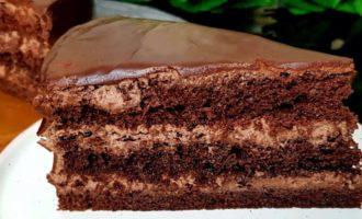 шоколадный пирог в микроволновке фото 19